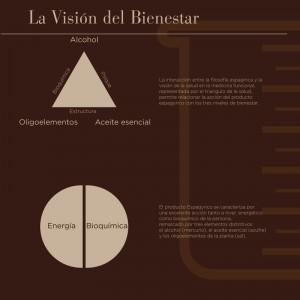 La visión del Bienestar