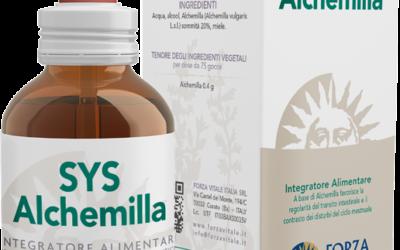 SYS Alchemilla