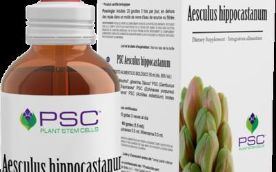 PSC® Aesculus hippocastanum