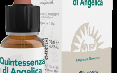 QE Angelica