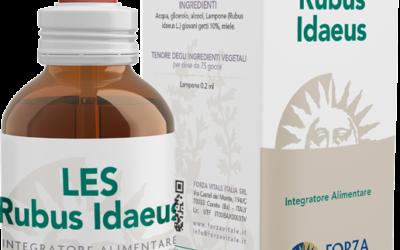 LES Rubus idaeus
